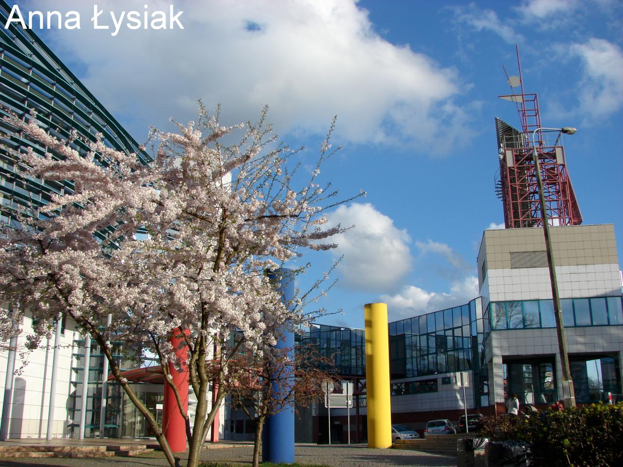 Collegium Polonicum w Słubicach będzie świętować 30-lecie
