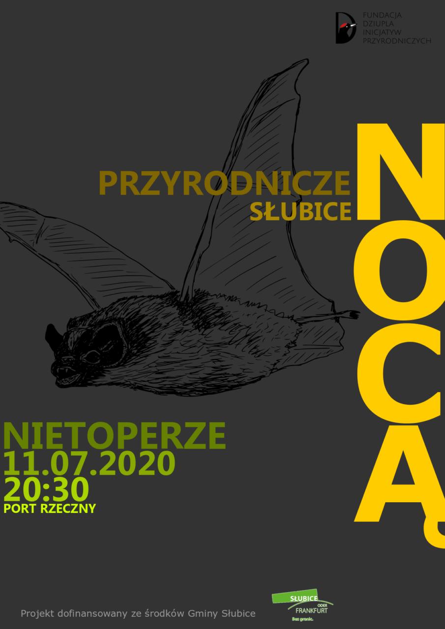 Chcesz poszukać nietoperzy? Fundacja Dziupla Inicjatyw Przyrodniczych zaprasza na kolejne spotkanie nocą!