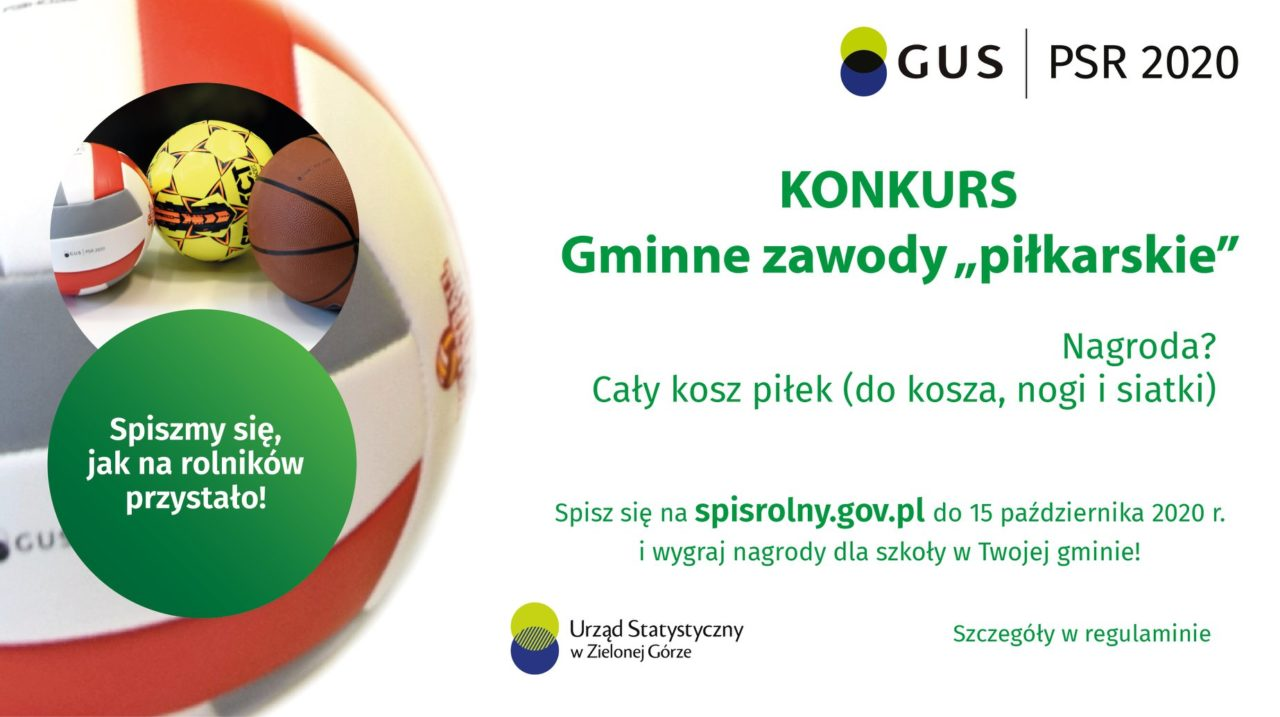 """Urząd Statystyczny w Zielonej Górze ogłasza """"Gminne zawody """"piłkarskie"""""""